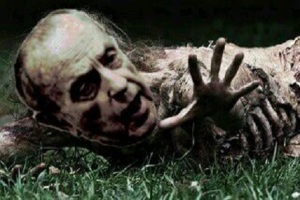 fraga zombie