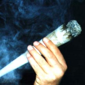 Cesan un ministro por fumarse os brotesverdes