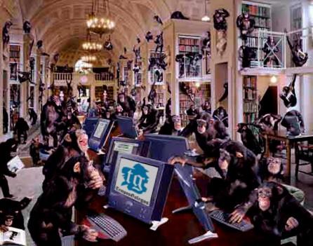 Macacos aclimatándose aos seus novos postos de traballo.