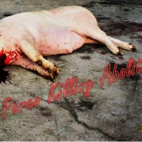 A Garda Civil desarticula unha banda de veganos que planeaba rebentar unha matanza enBecerreá