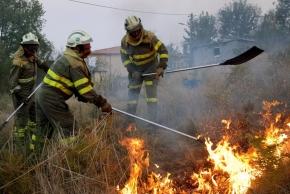 A Xunta aproveitará os grandes incendios para facer macro – festasgastronómicas