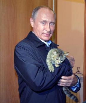 Putin investiga co uso de gatosatómicos