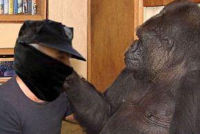 Centro de investigación de primates consegue que un policía aprenda 50 palabras engalego