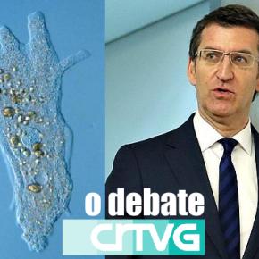 A TVG organizará un debate a dous entre Feijoo e unha ameba para ver se así ogaña