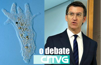 debate-ameba-feijoo