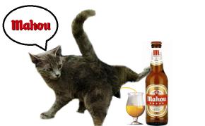 Localizan un dos gatos que mexa aMahou